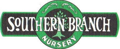 Southern Branch Nursery